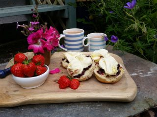 Afternoon Tea at Freathy Farmhouse B&B